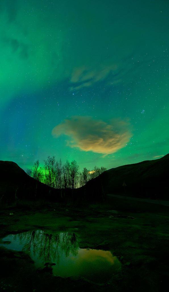 The Fellowship of Light - Ersfjordbotn Kystferie
