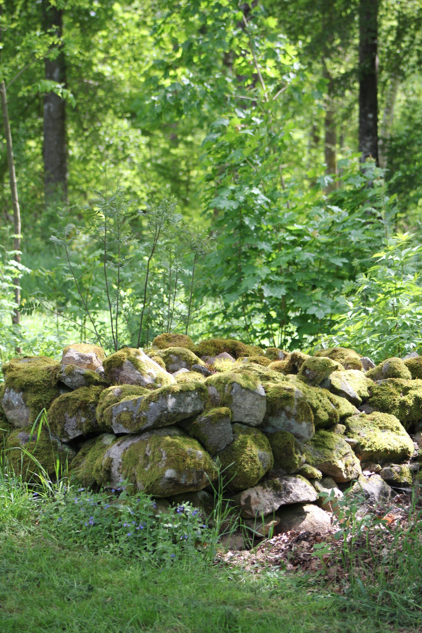 Stockanäs naturreservat