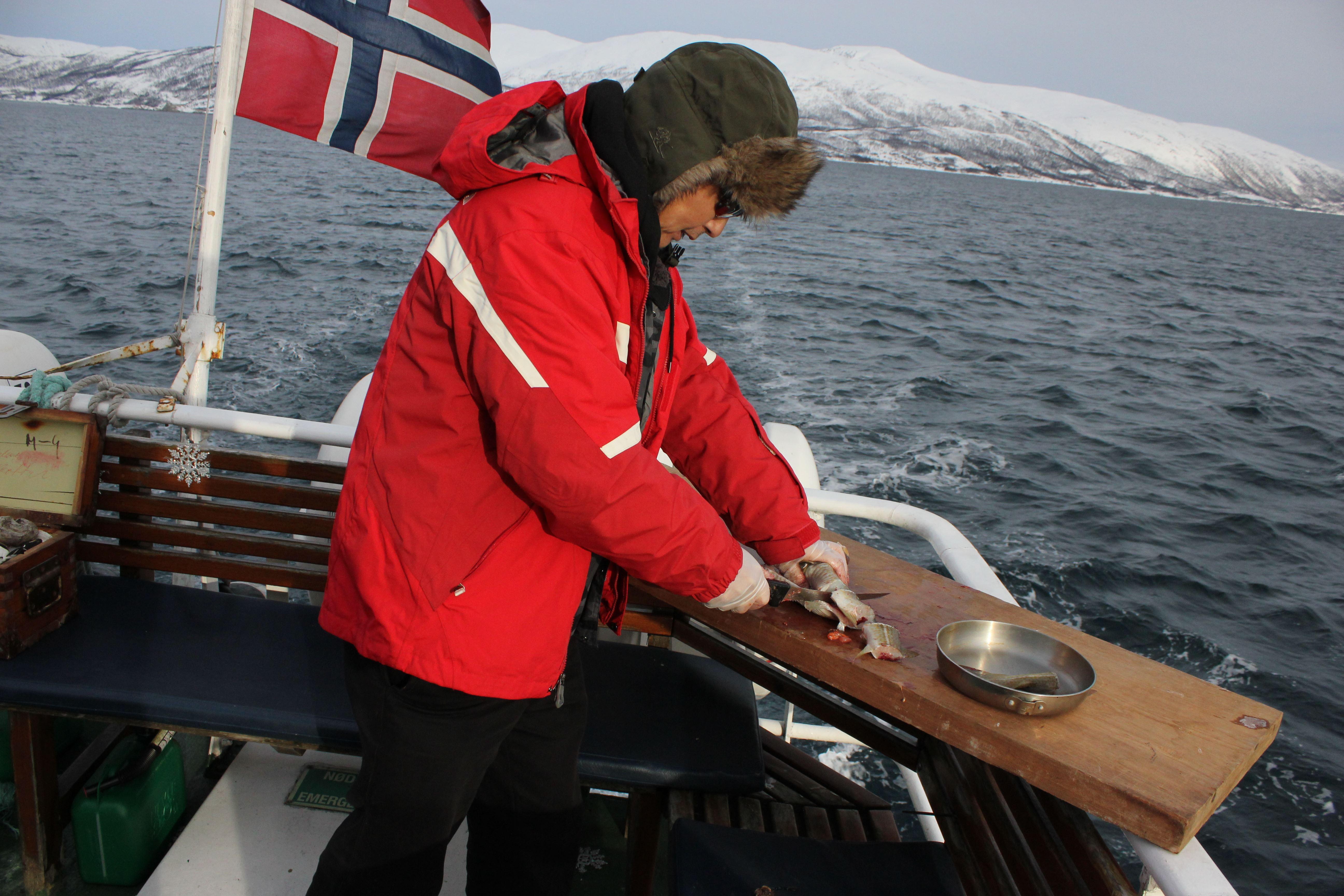Fjord fishing at the edge of Tromsø