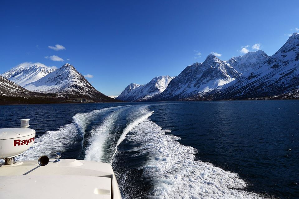RIB-boat and hiking - with view to the Lyngen Alps