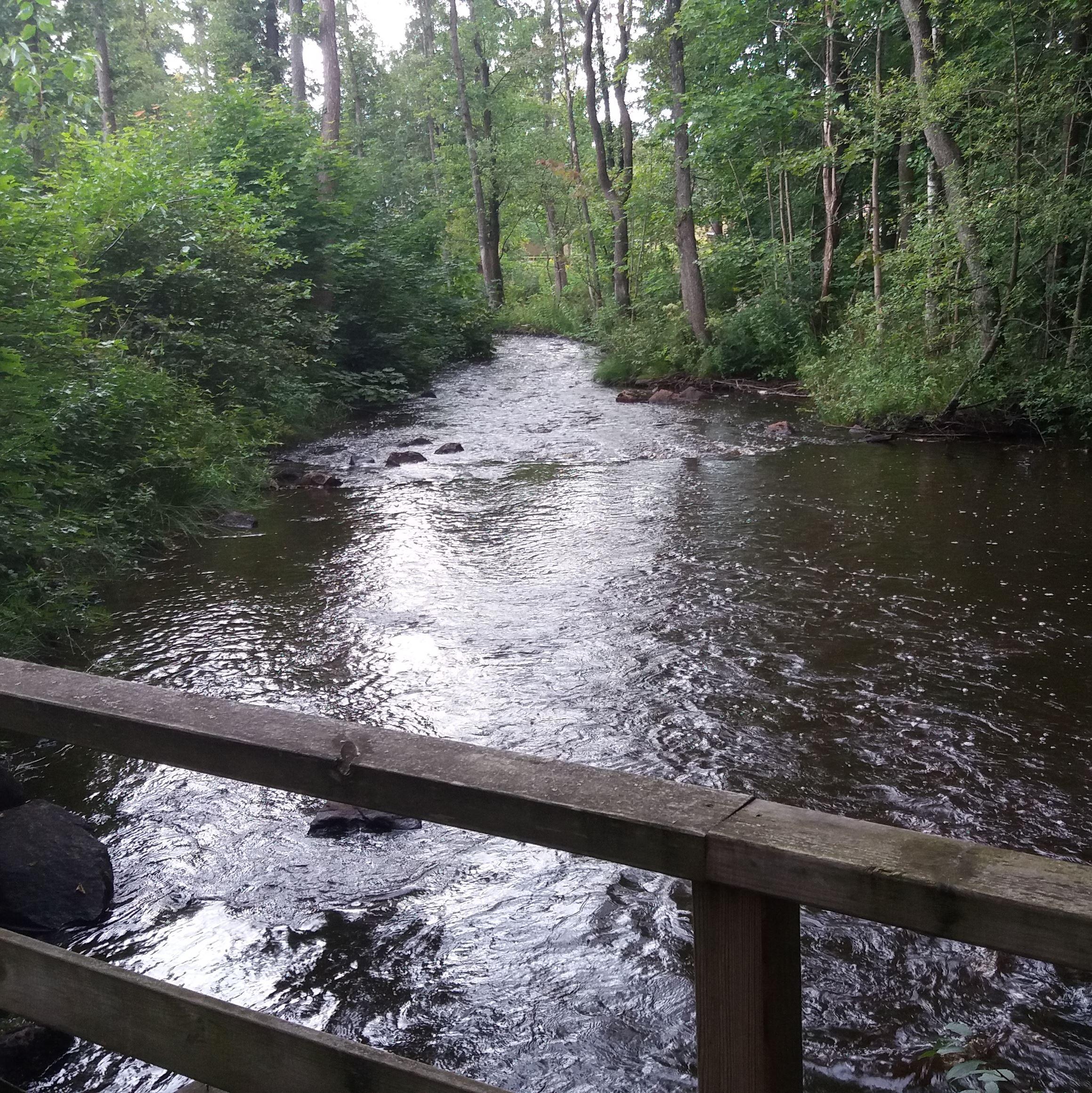 Driveån från lilla träbron