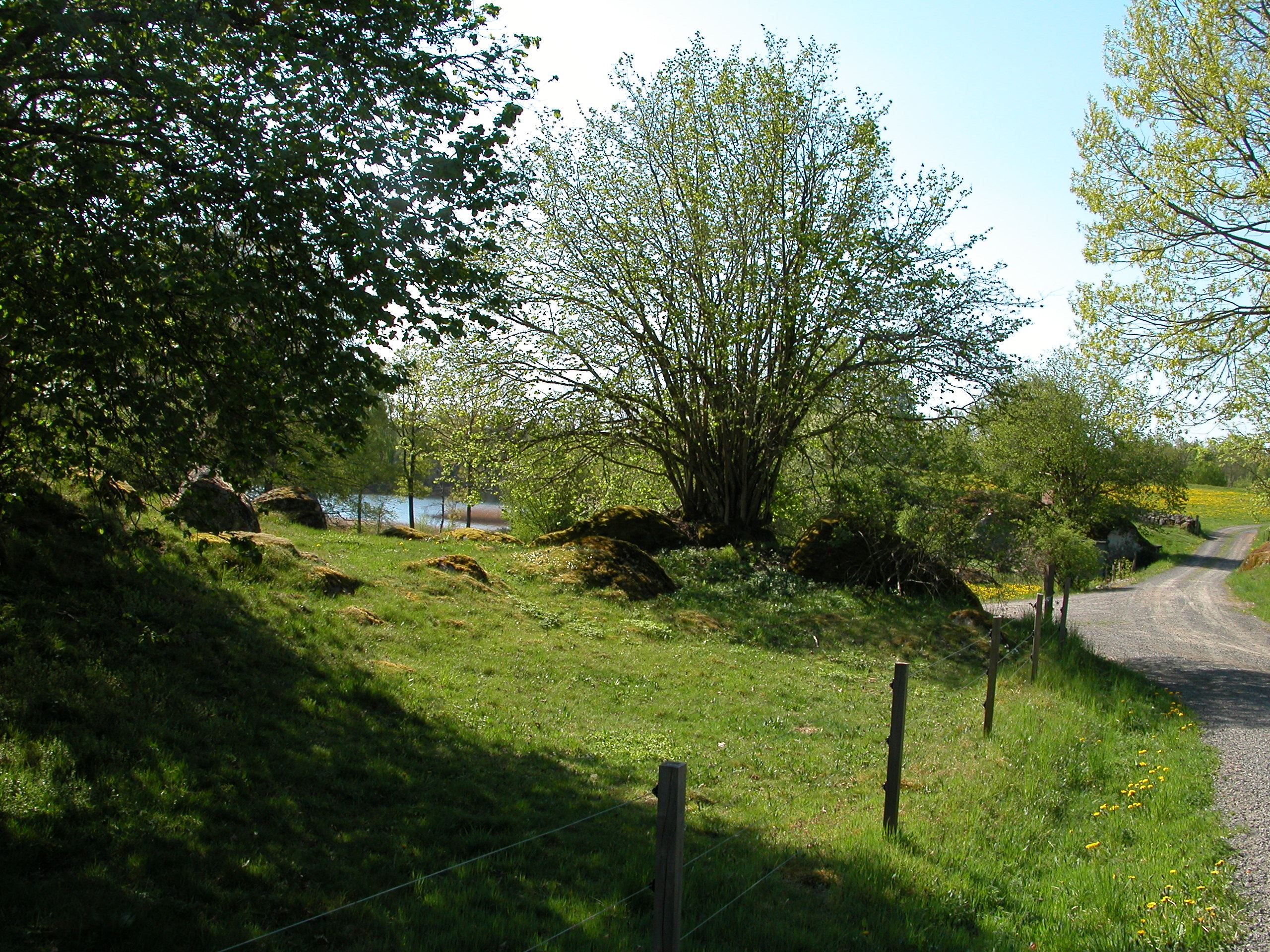 Höö naturreservat