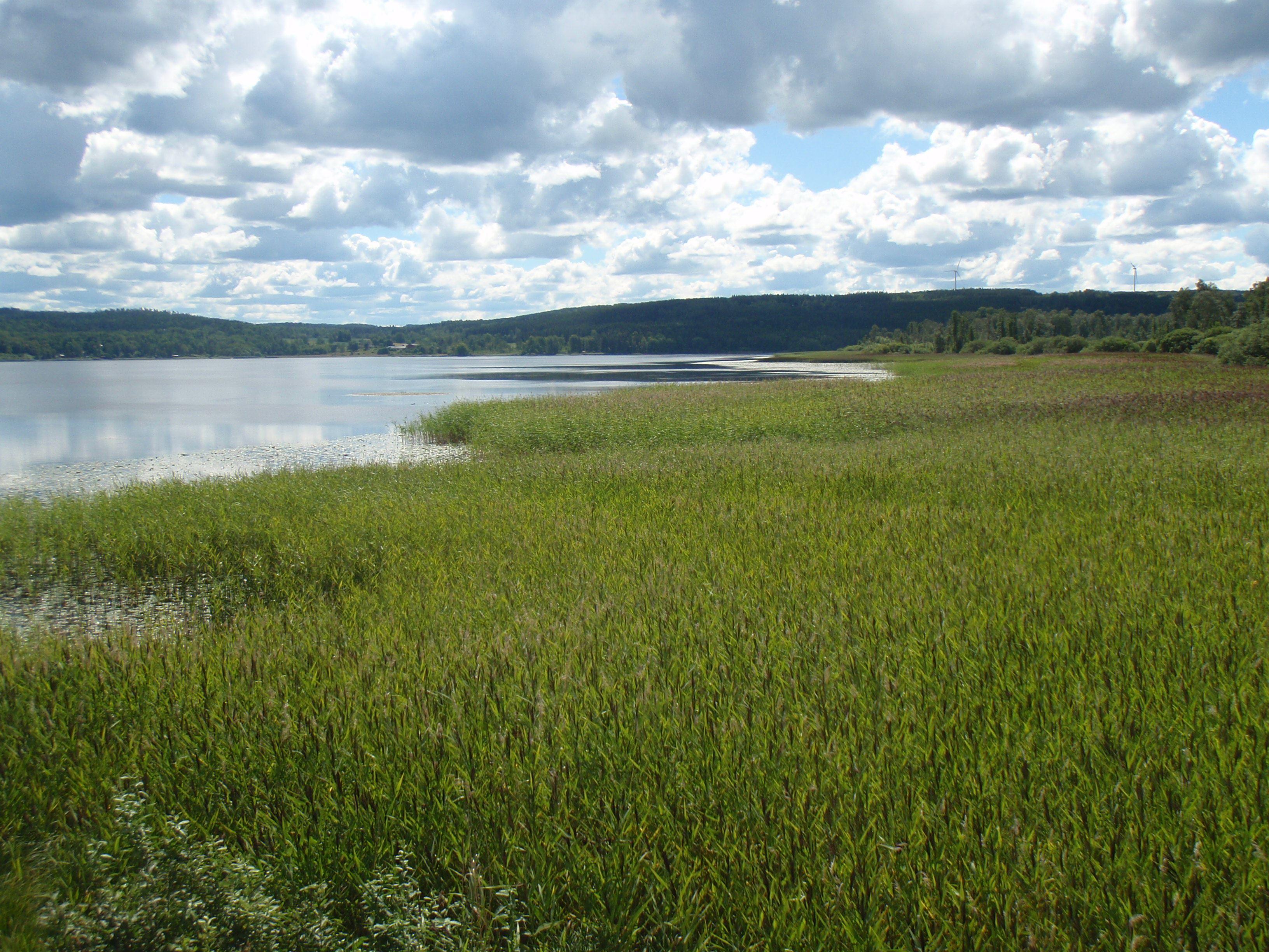 Utsikt över Säbysjön
