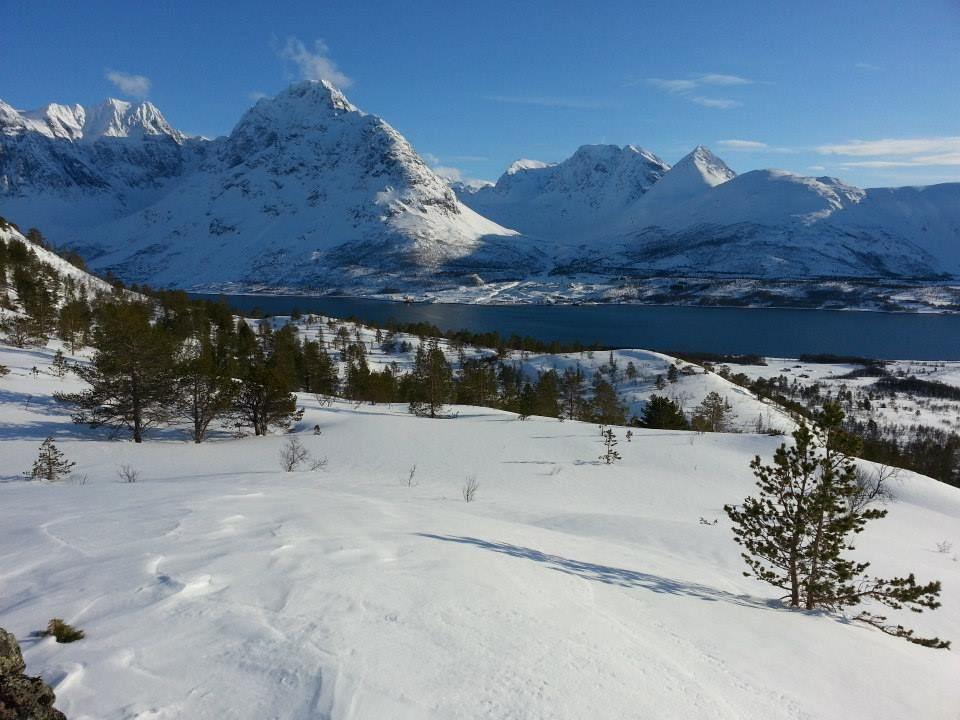 Snowshoe walk in Lyngen - Svensby Tursenter