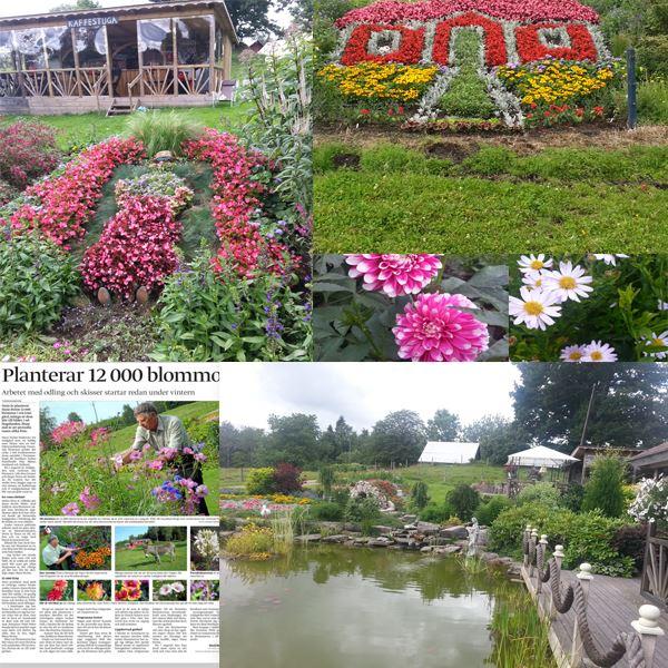 Ströms Trädgård
