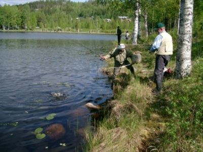 Fiske i Norsjö