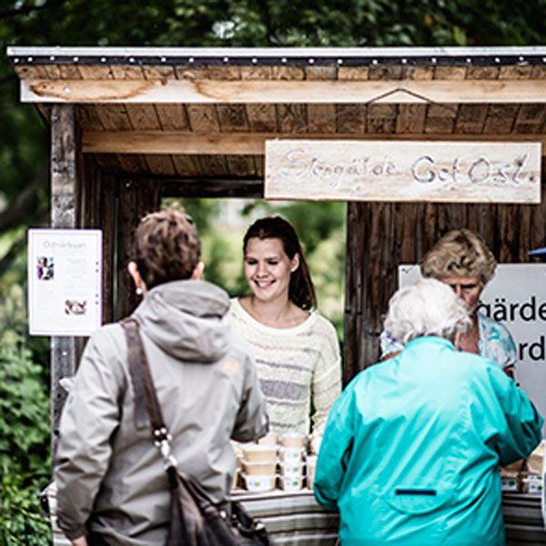Skördefest - Öppna gårdar i Jämtlands län