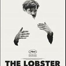 Bio Kontrast Leksand - The Lobster