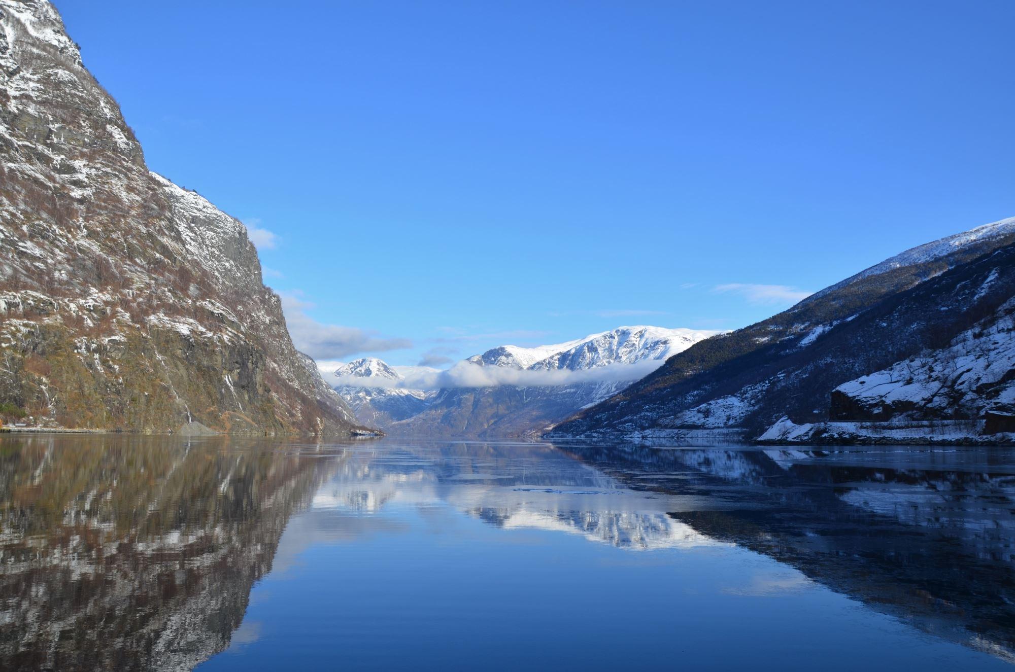 Vinter FjordSafari