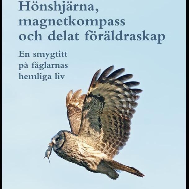 Leksands Fågelklubb -  Firar 40 år