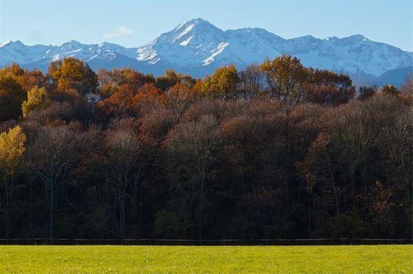 © /, HPG141 - Cabane sur Pilotis vue Pyrénées – 2 personnes