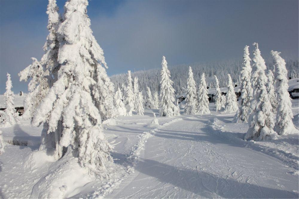 Opening of the ski season in Hafjell Norway
