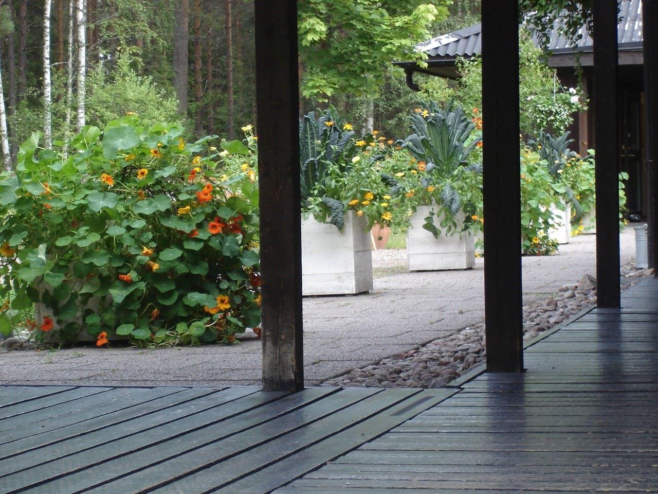 Meditationsgården, St:Davidsgården Rättvik