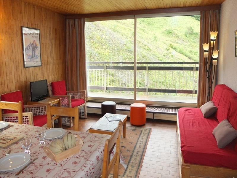 3 rooms 8 people ski-in ski-out / OURSE BLEUE 709 (mountain)