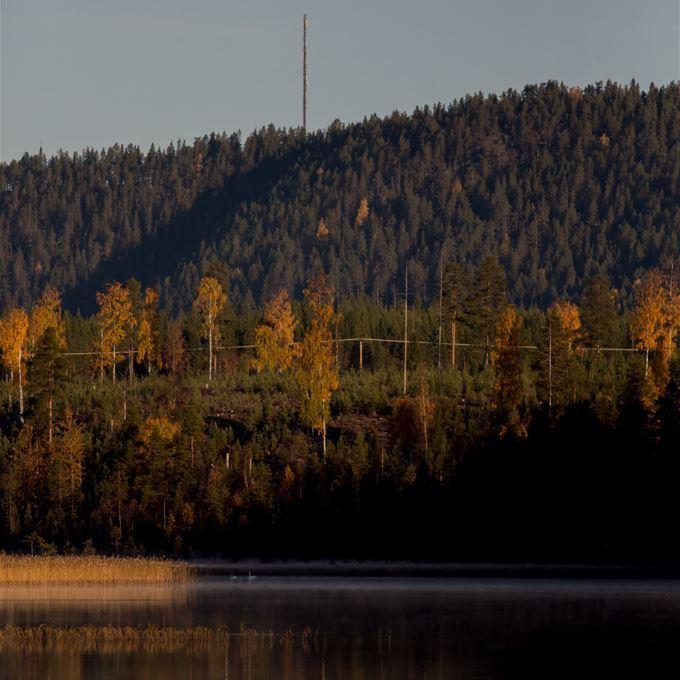 Ricke.se,  © Malå kommun, Nölviken