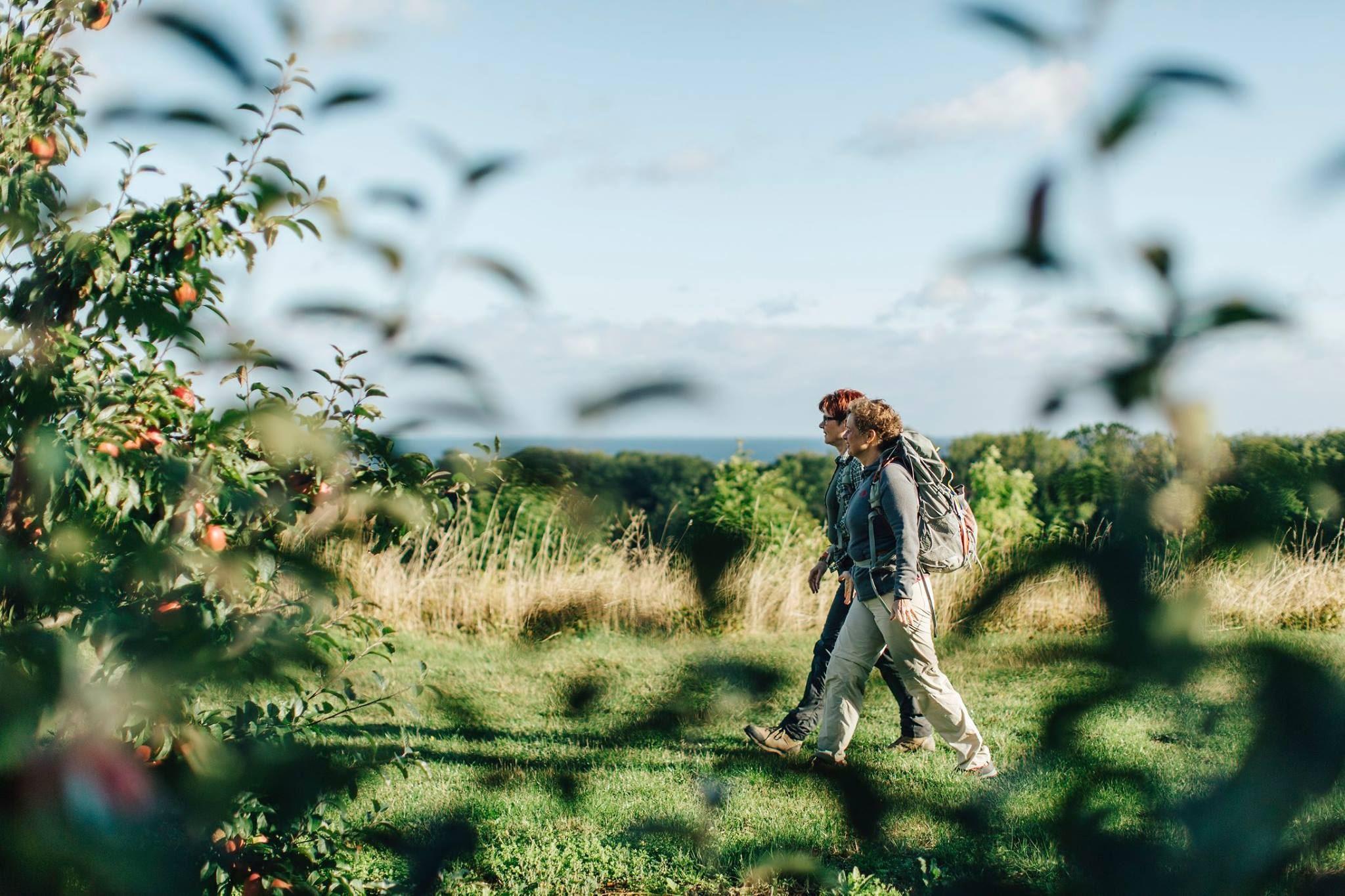 Skåneleden natur trail