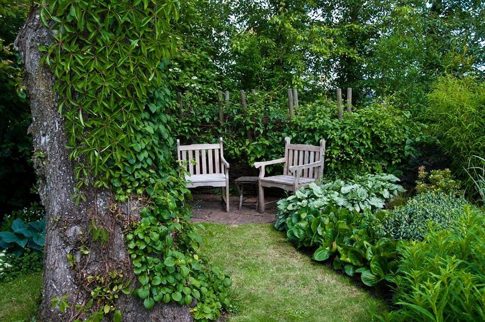 Lotties Trädgård