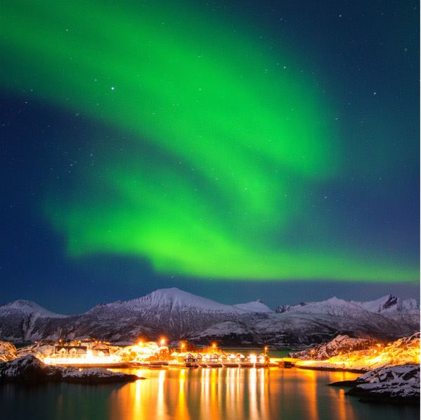 2-Day Senja Package - Whale Research Safari and Northern Lights - Wild Seas