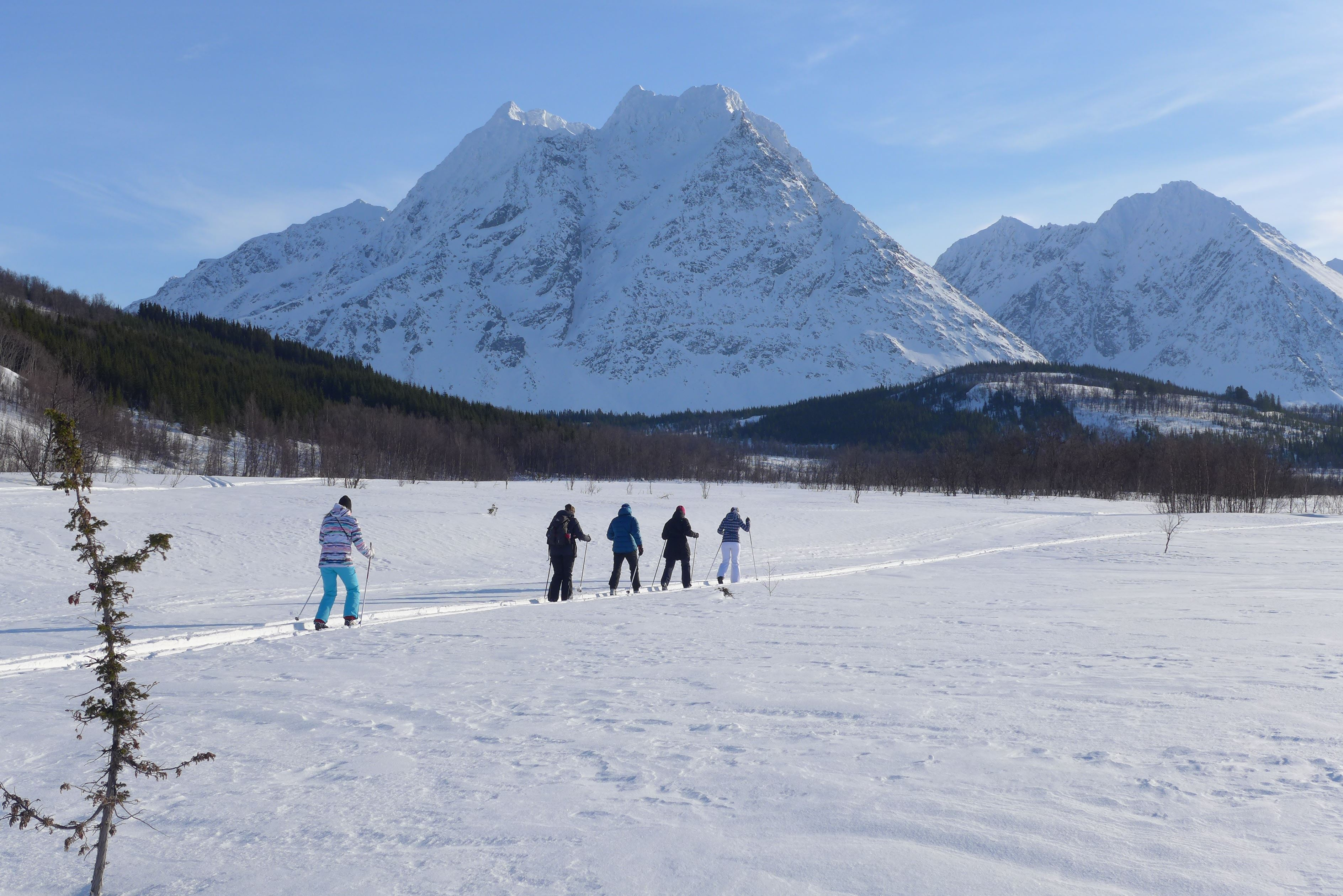 Cross-country skiing and courses in the Lyngen Alps