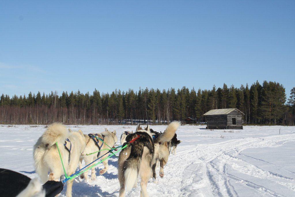 Lappland Emotions