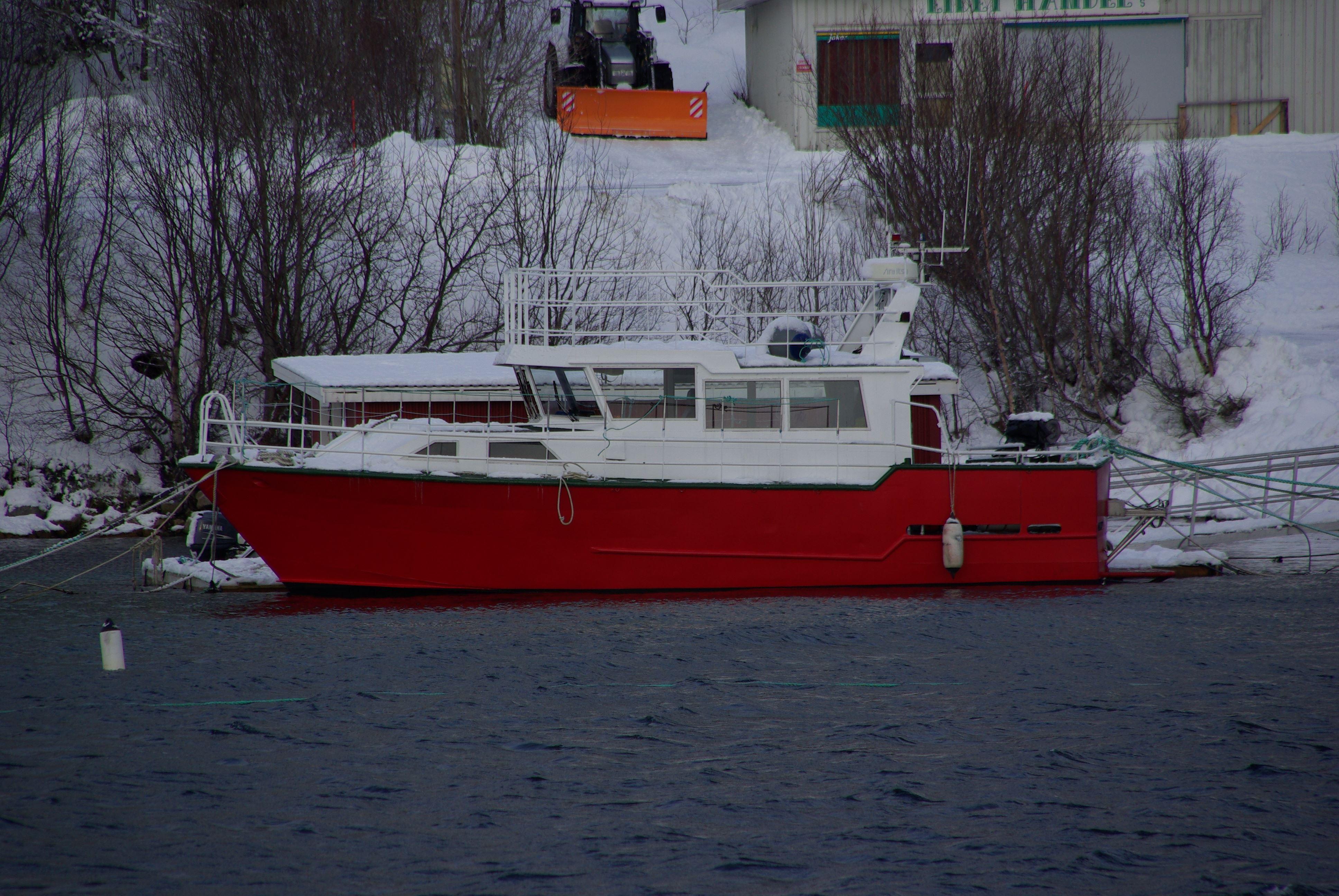 Hvalsafari med MS Senjafjell – Solbø Maritime Adventure