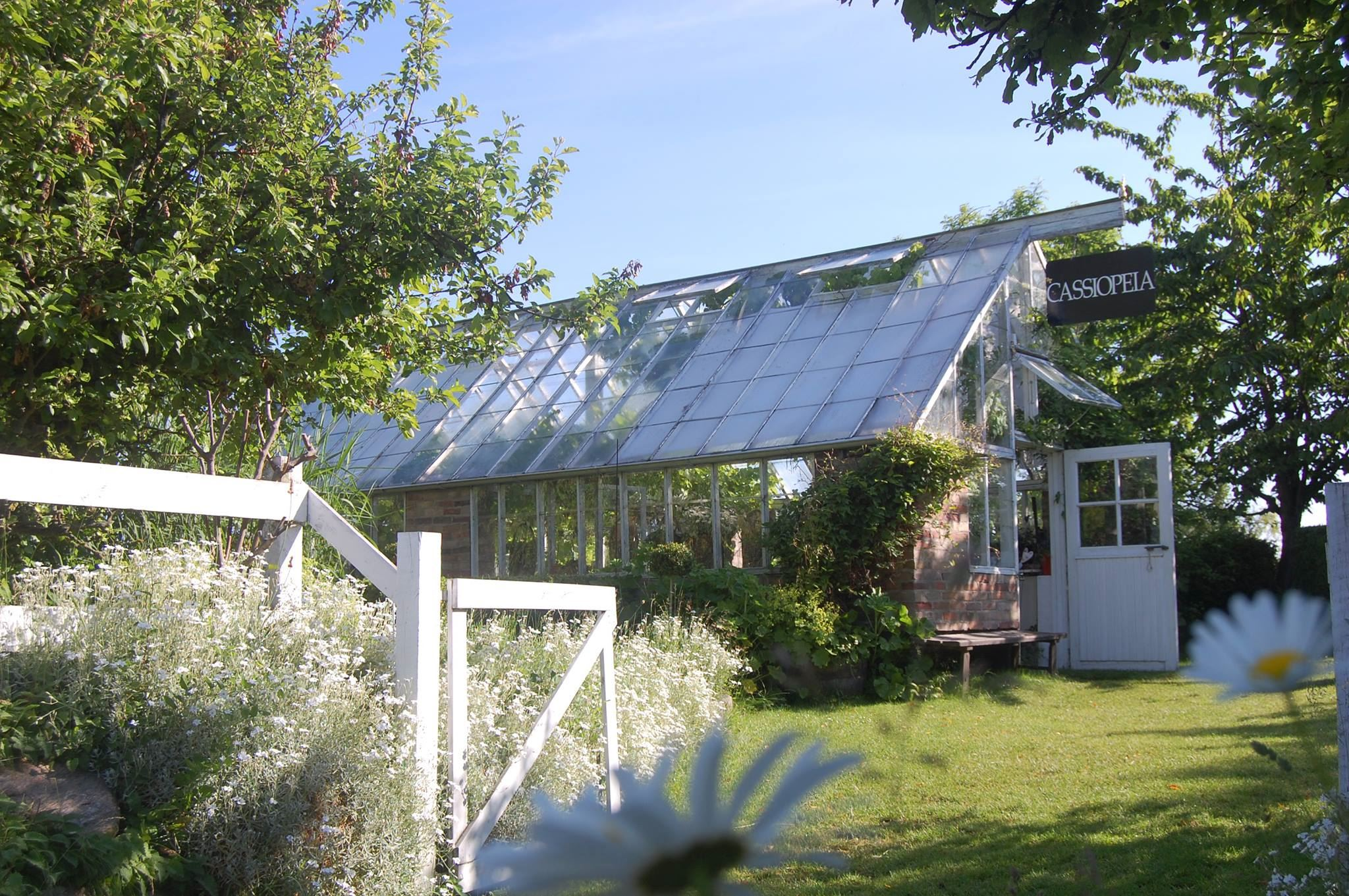 Cassiopeia trädgårdsgalleri-Ven