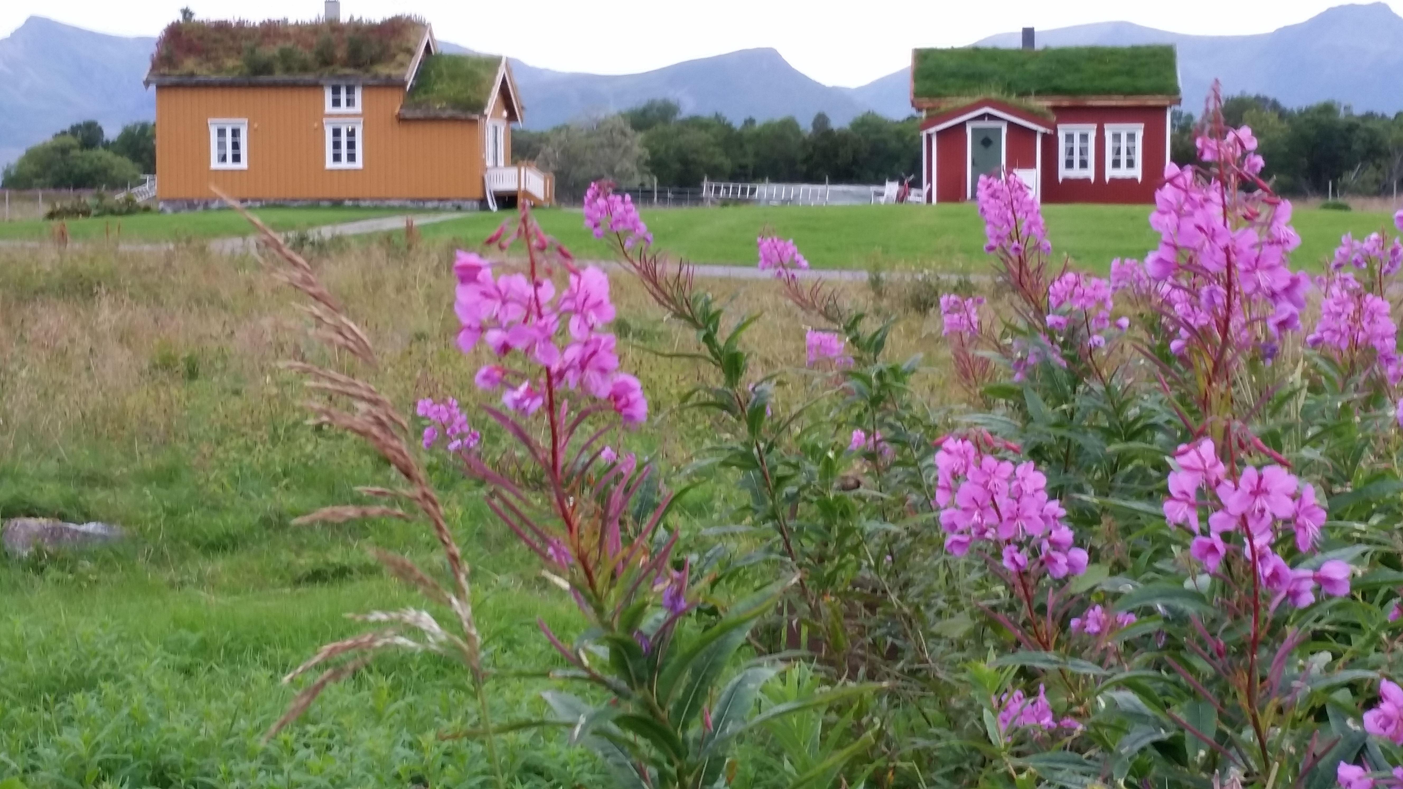 © Loviktunet, Det gule huset på Loviktunet