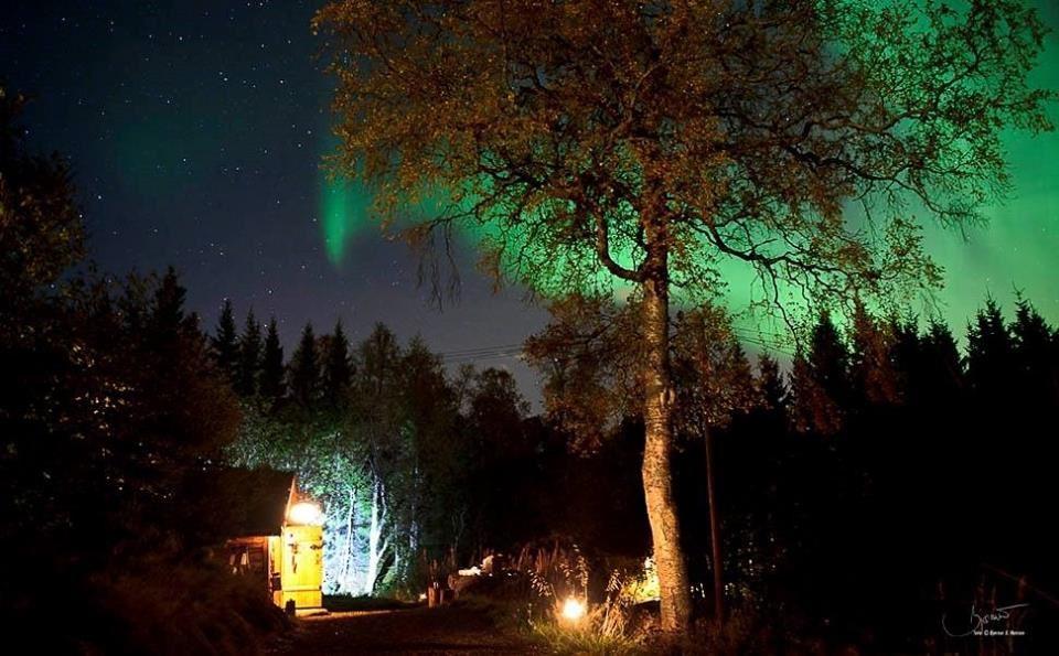 Holemark Gård,  © Holemark Gård, Holemark Farm