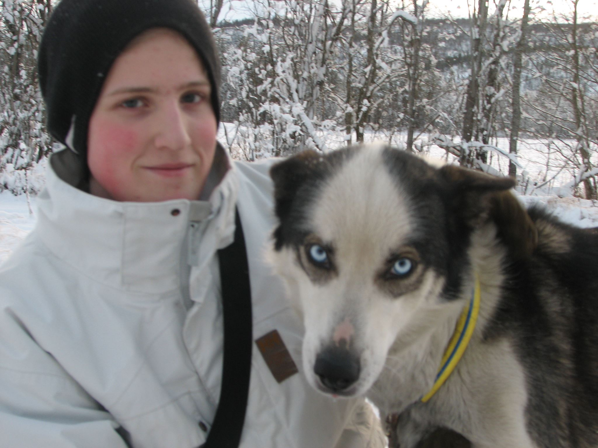 Snowman - Husky Safari From Narvik - Destination Snowman