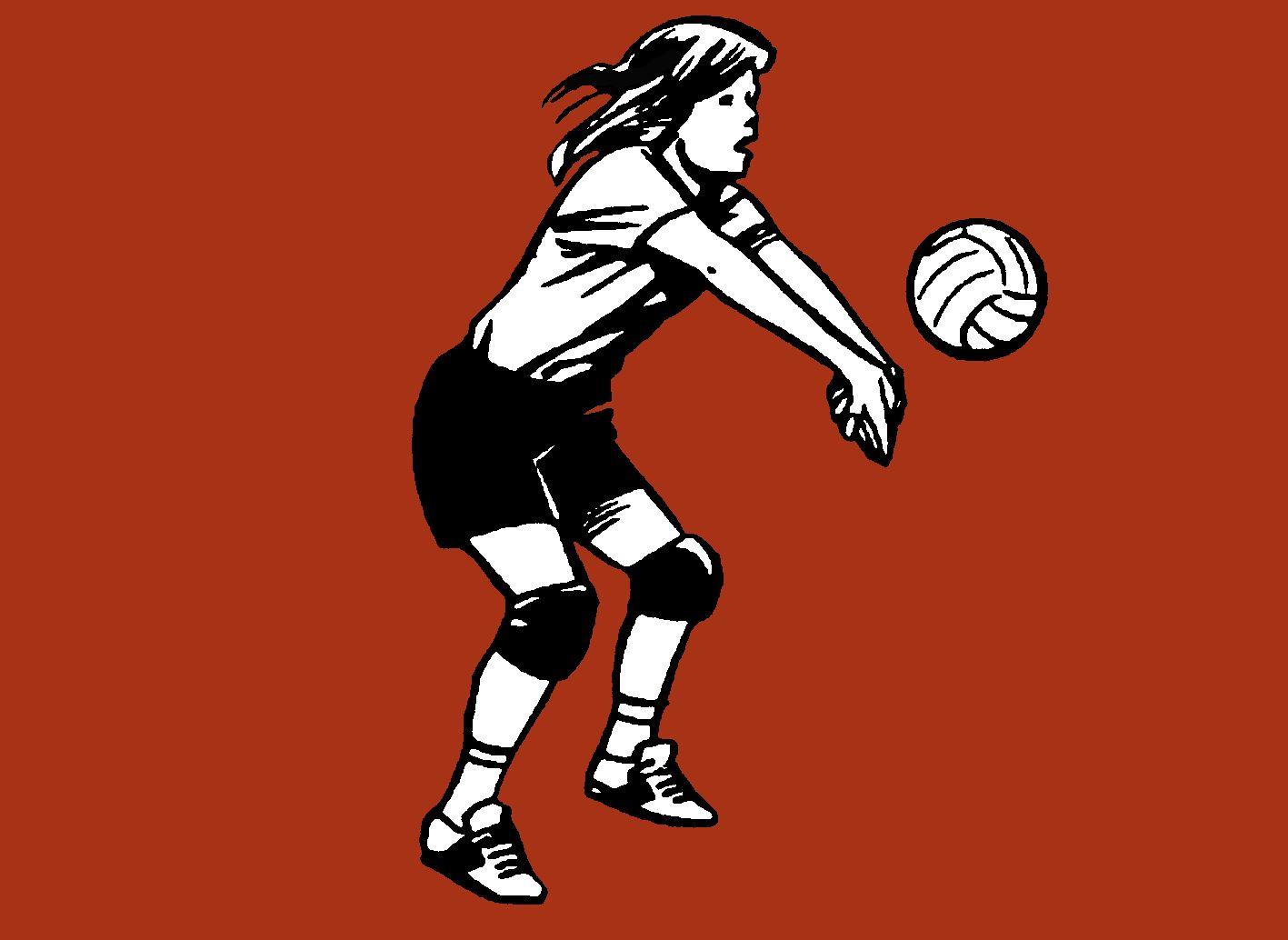 Volleyboll damer