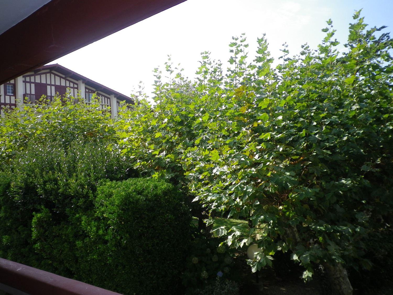 Apartment Duchen - ANG2203