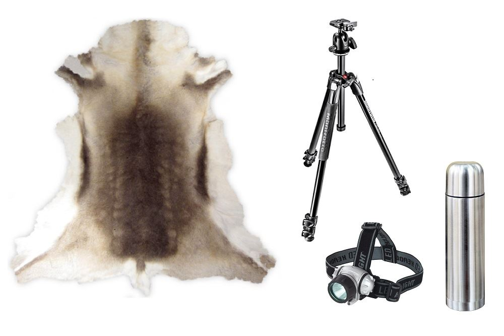 00. Northern Lights Package - tripod, thermos, headlight and reindeer hide rentals