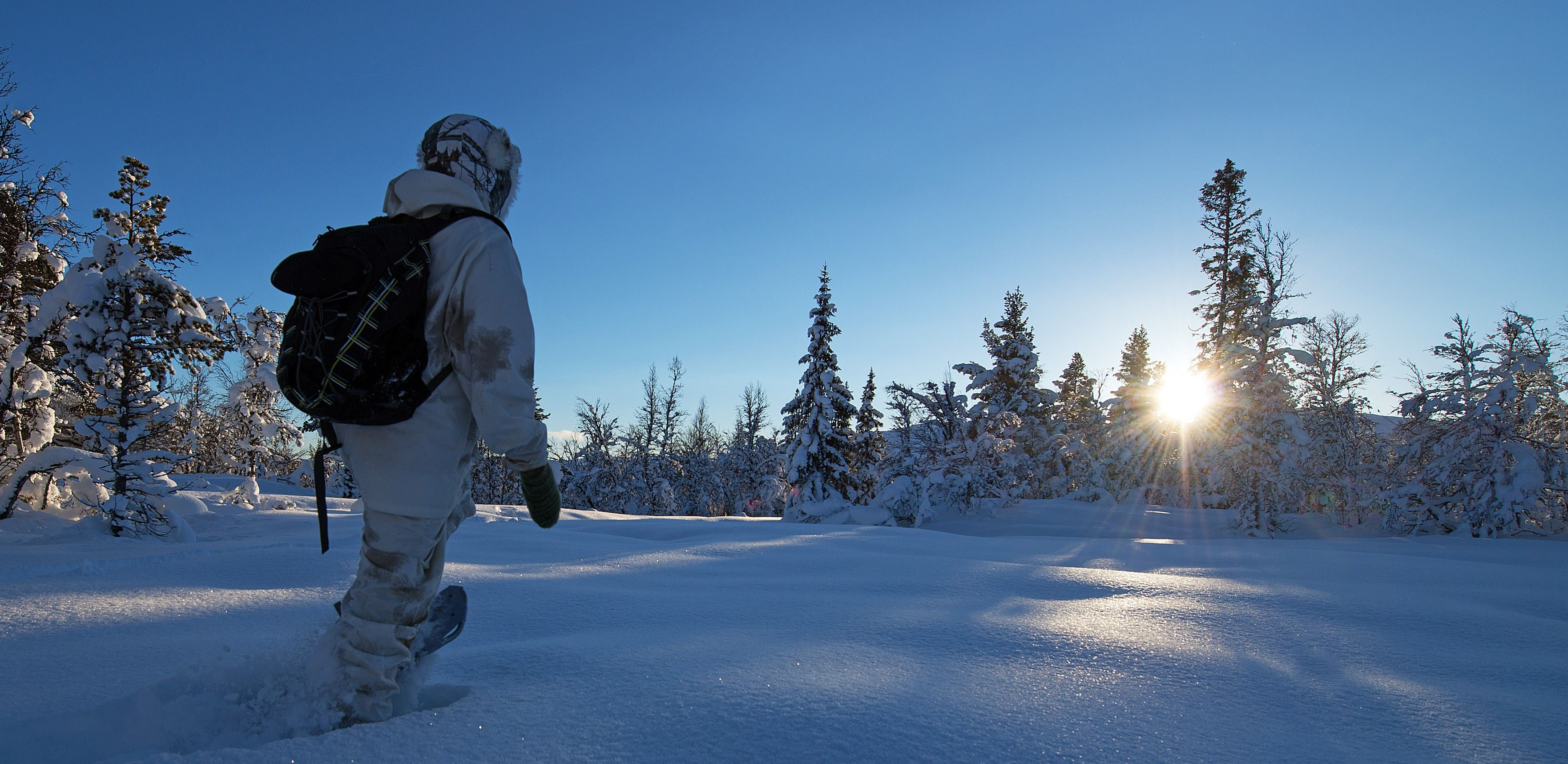Stunning morning snowshoe hike for adults