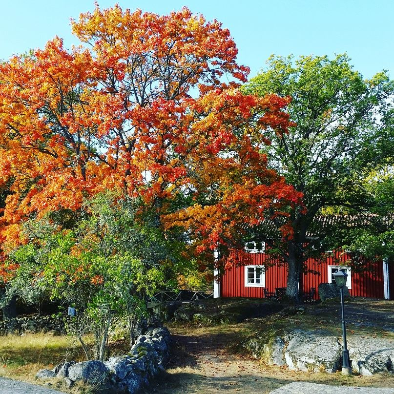 Tjärö hotel and B&B