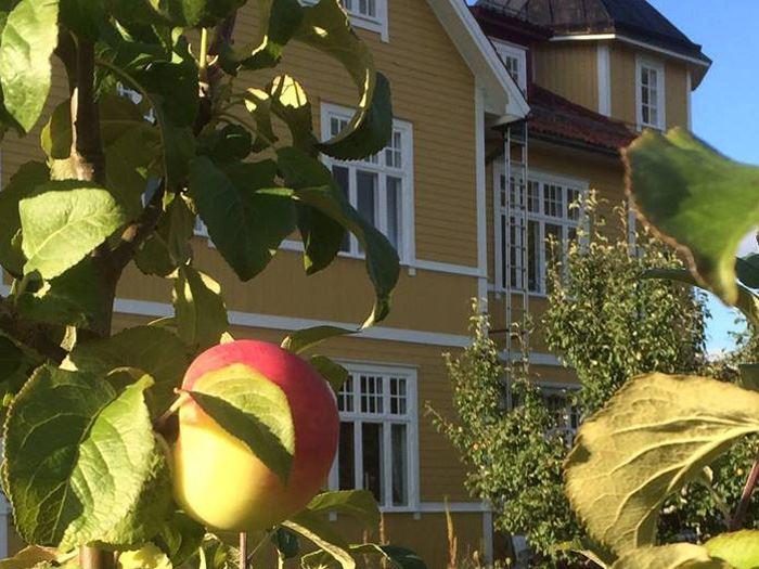 Älvdalen, STF Vandrarhem Tre Björnar