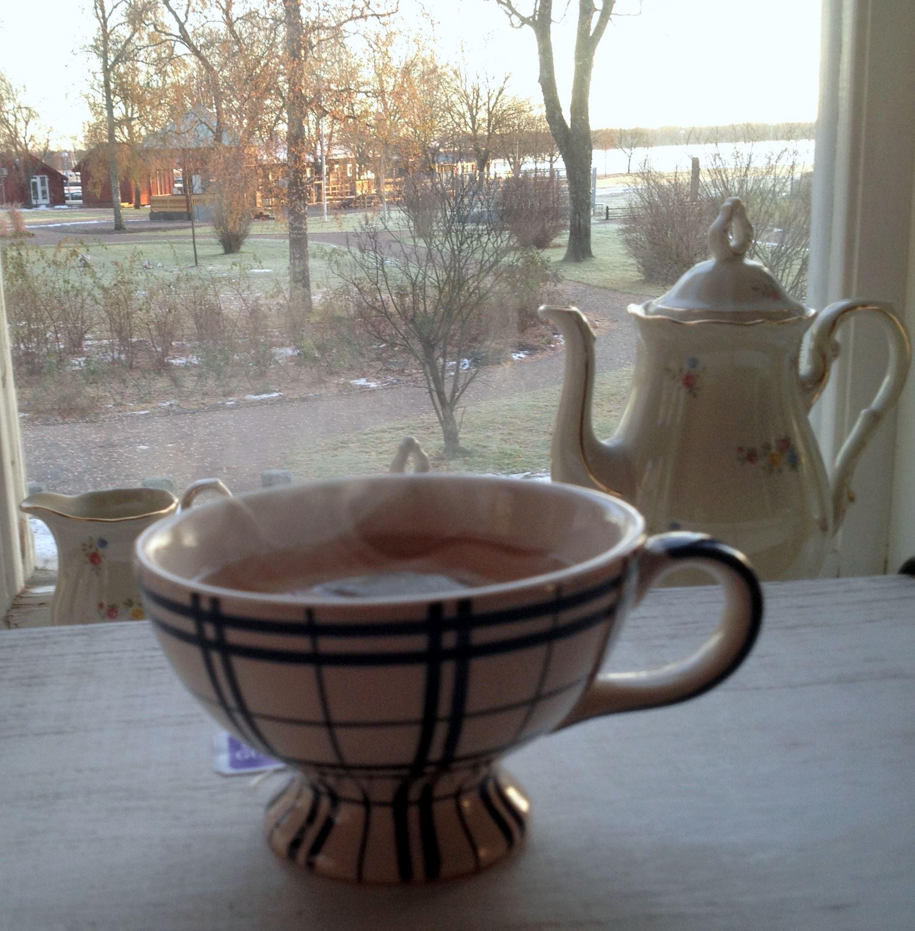 Afternoon tea hos Villa Östhammar