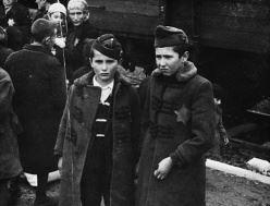 Utställning: Albumet från Auschwitz
