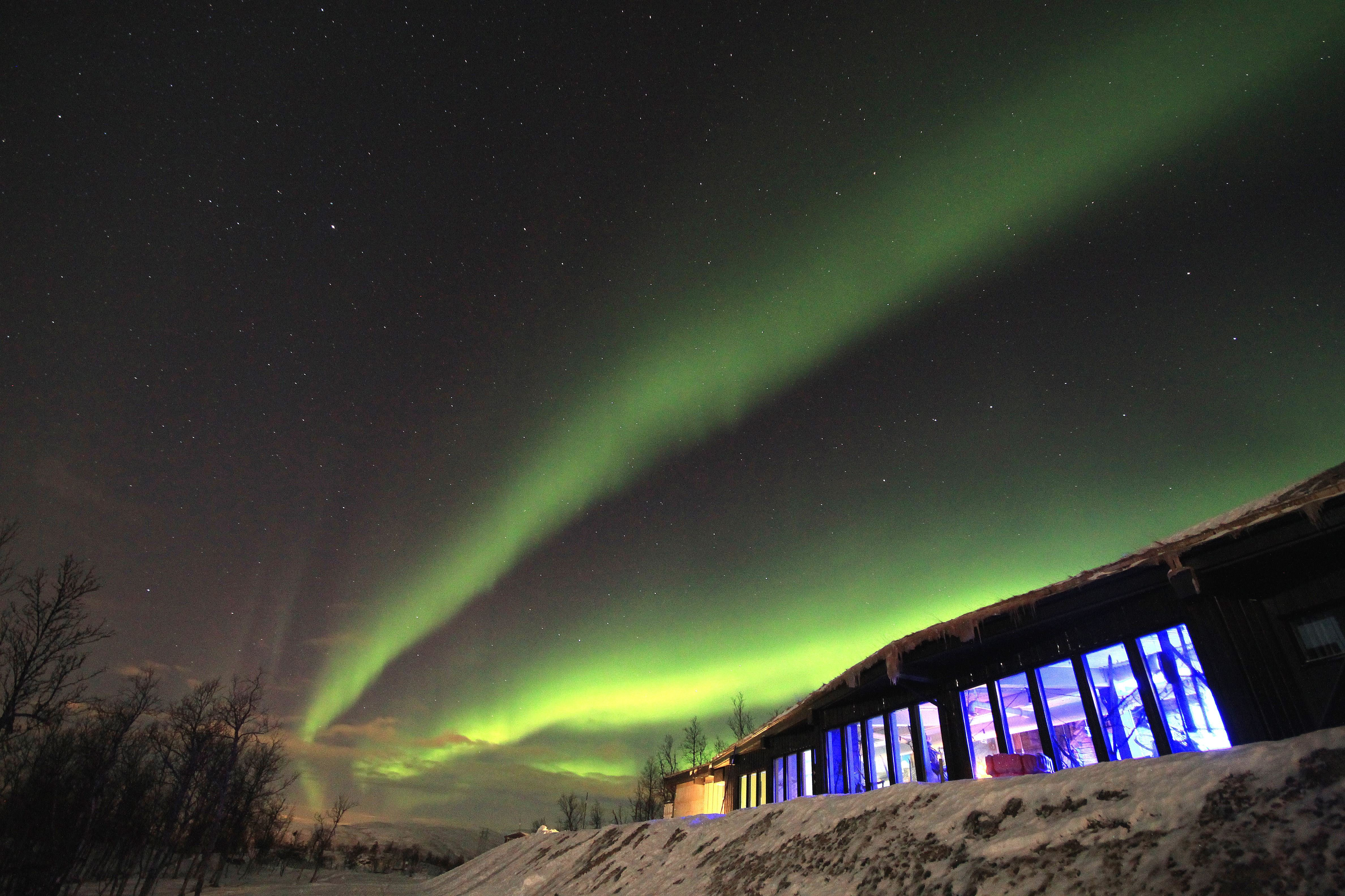 Snowman - Aurora Høydepunkt fra Narvik - Destination Snowman