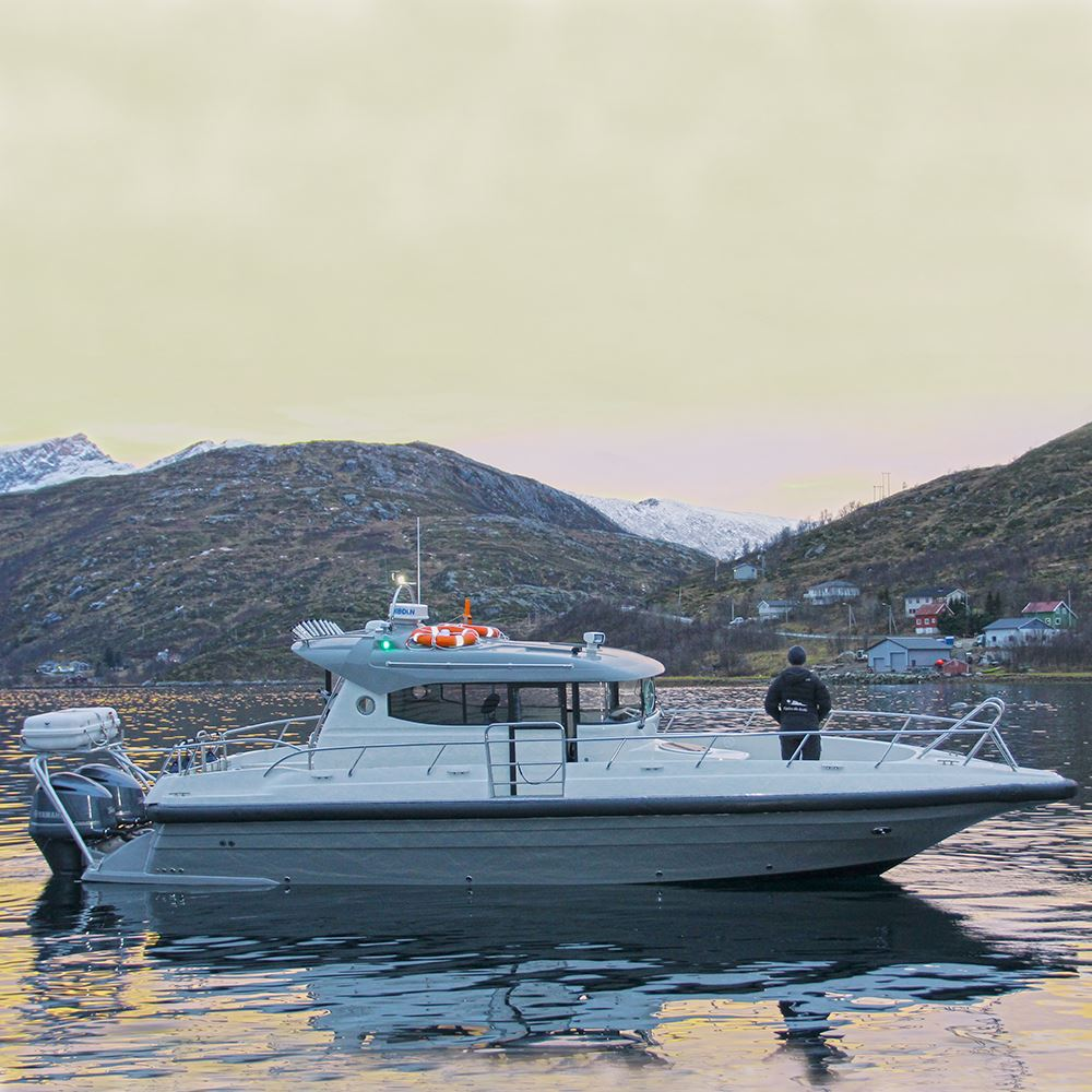 Guidet fisketur med charterbåt – Explore the Arctic