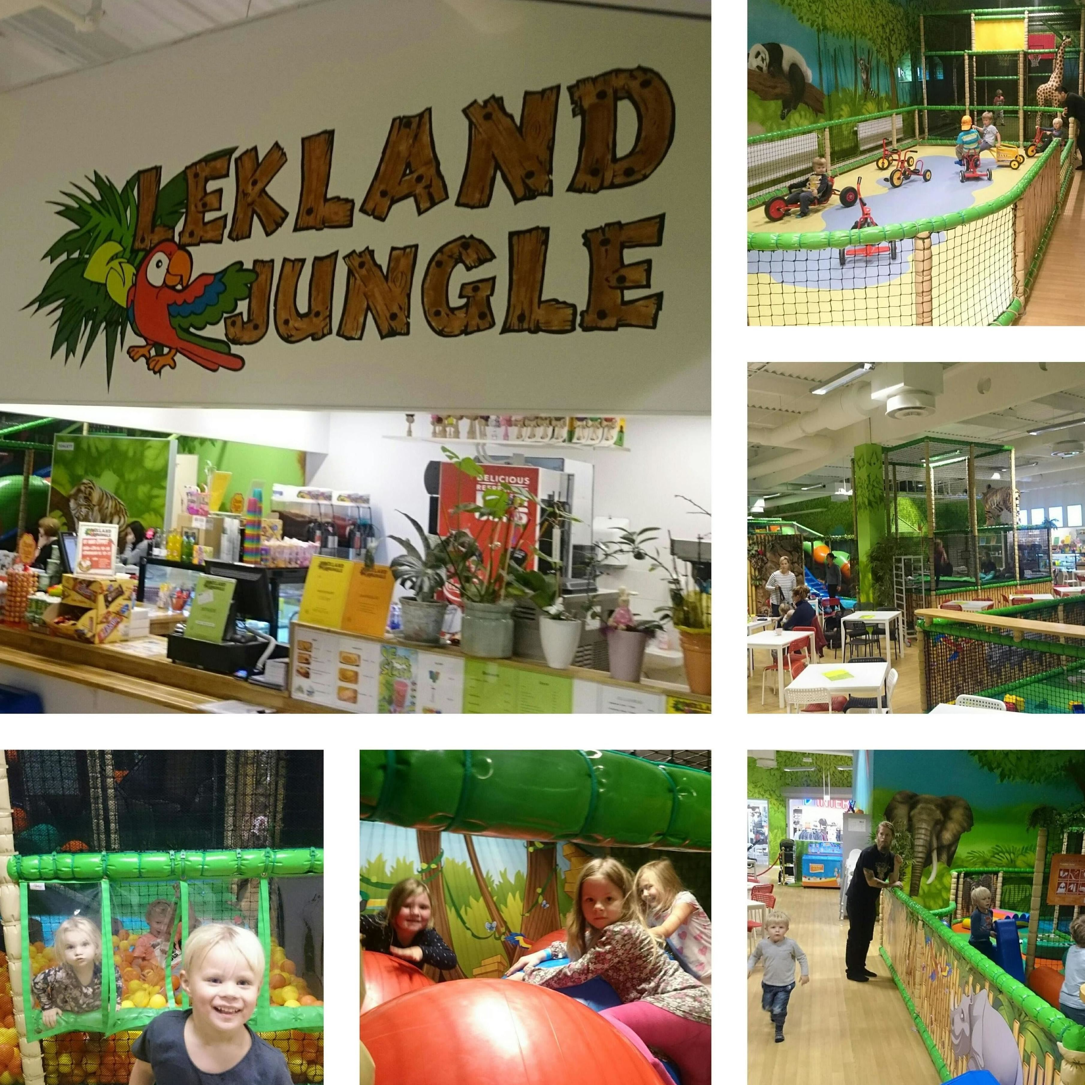 Luis Reyes Conill, Lekland Jungle