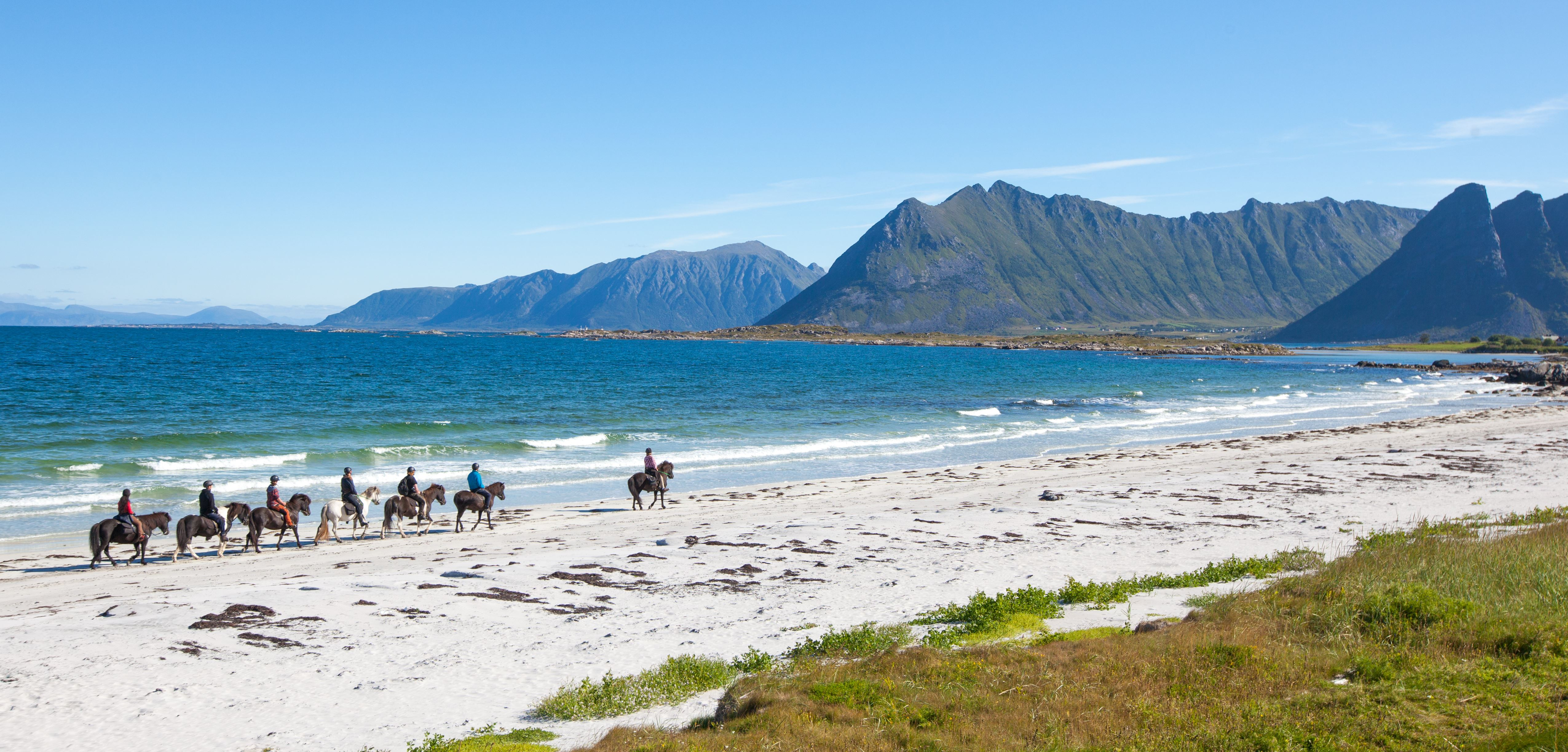 Halvdagstur til Vinjestranda - Turridning på Islandshest i Lofoten