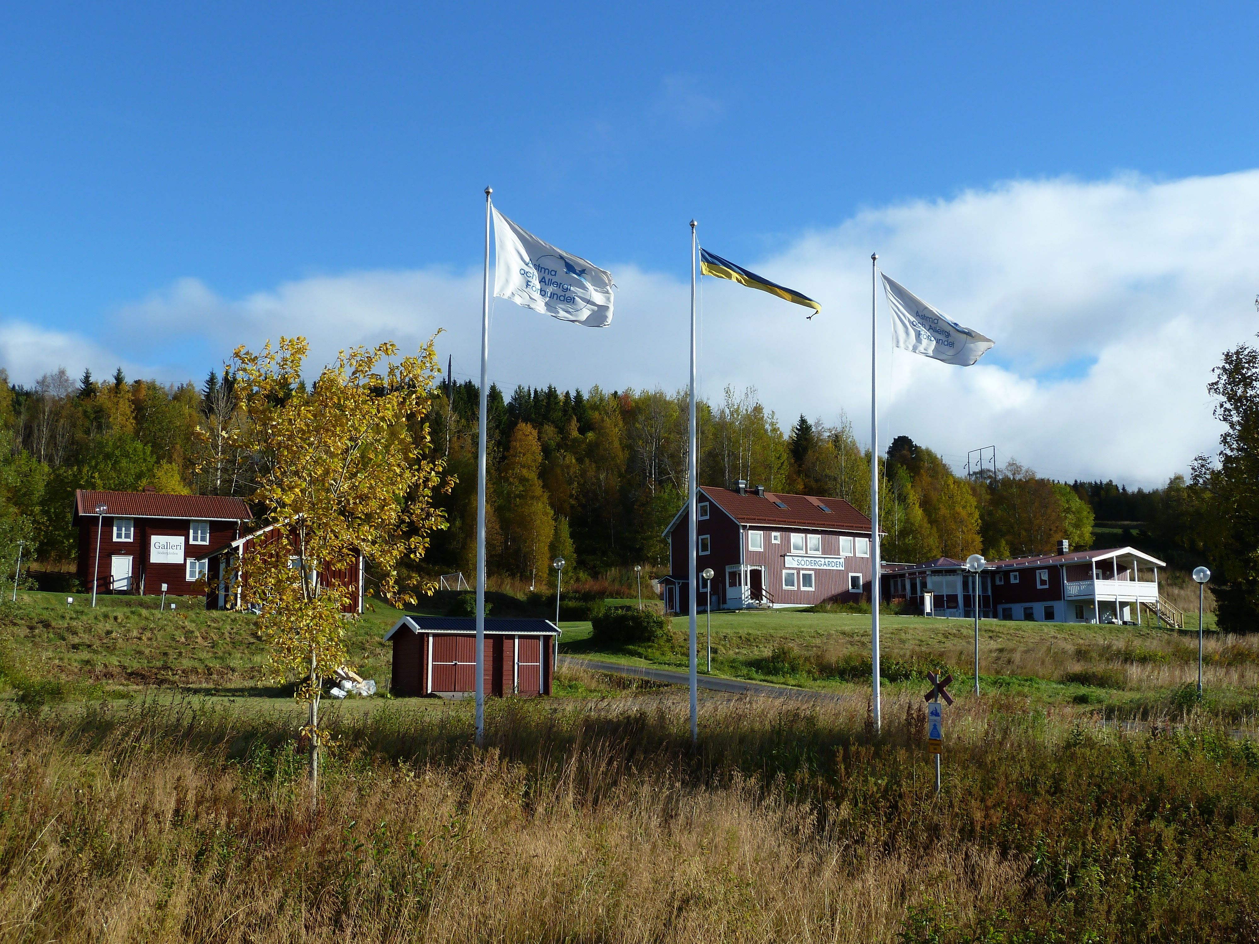 Södergården Åre, Allergy-free