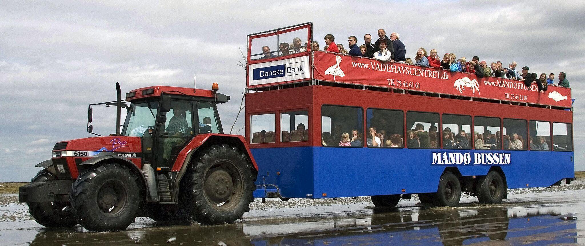 Østers & champagnetur med Mandø Event