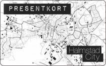 Citypresentkort 300:-