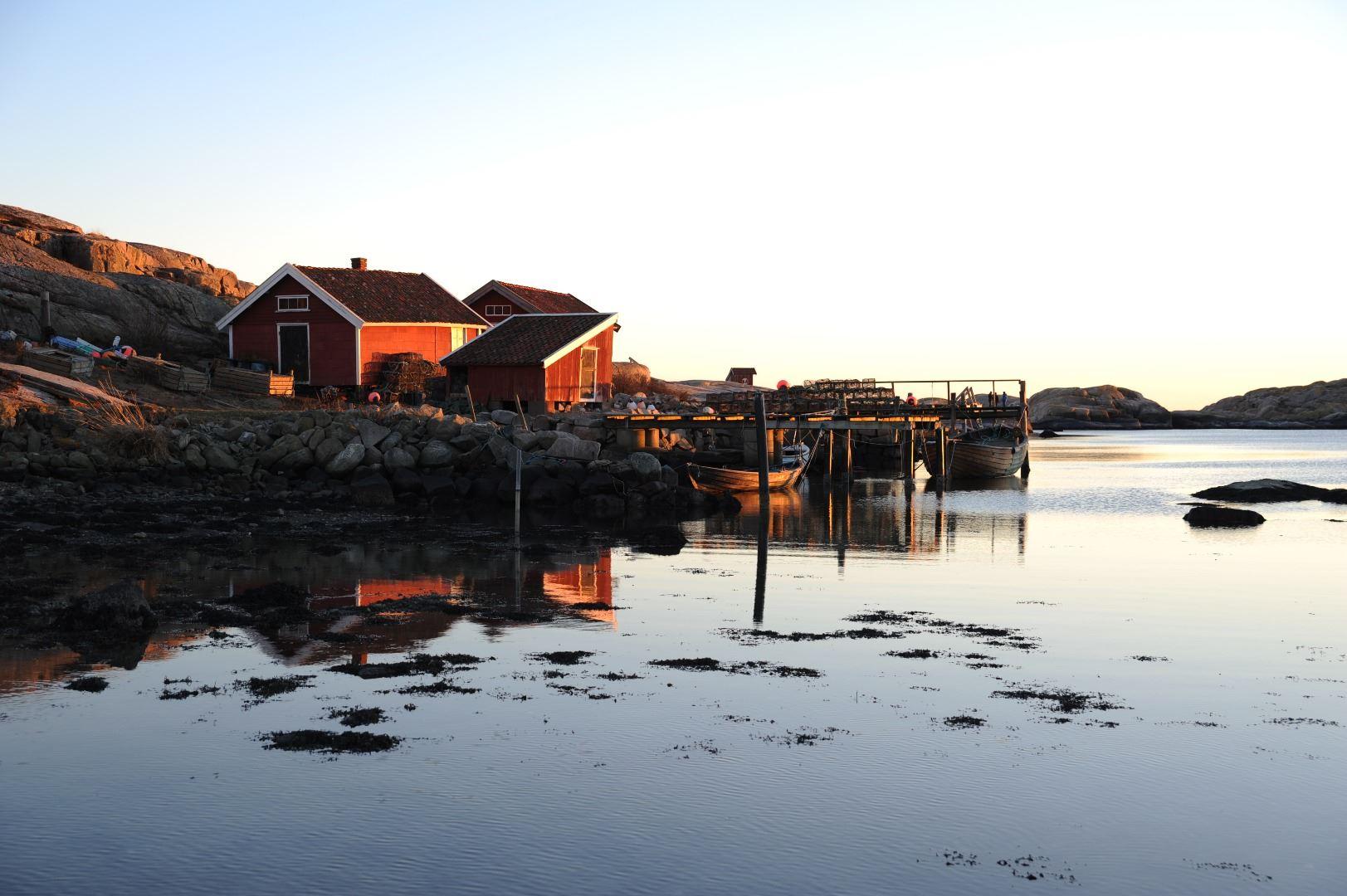 GrebbestadFjorden