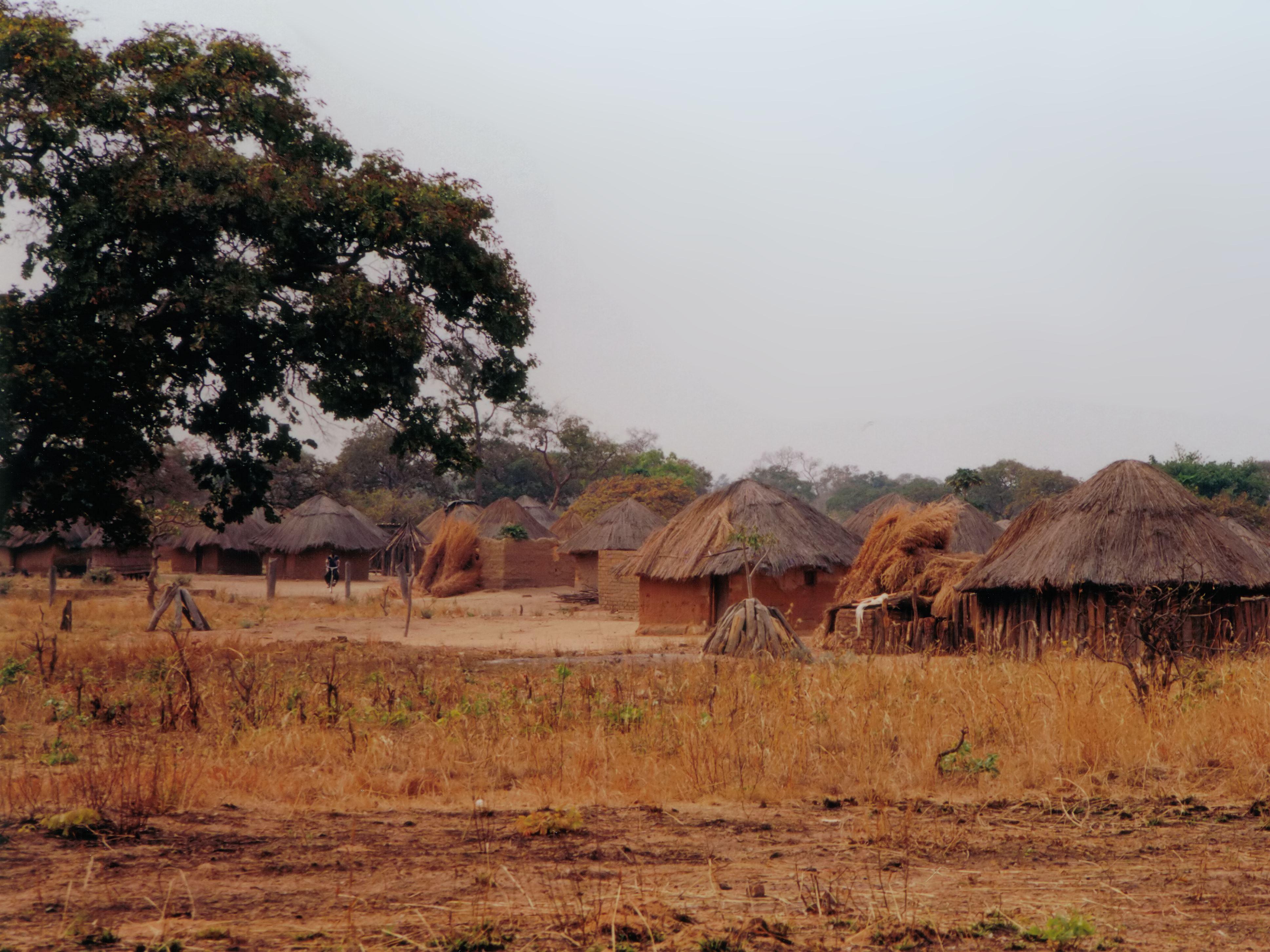 Ulrik Alm - Luangwa - vildmark och by i Zambia