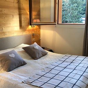 2 pièces cabine 6 personnes skis aux pieds / DOMAINE DU JARDIN ALPIN R7A (montagne de charme)
