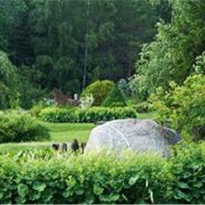 Torgnys Inspirationsträdgård