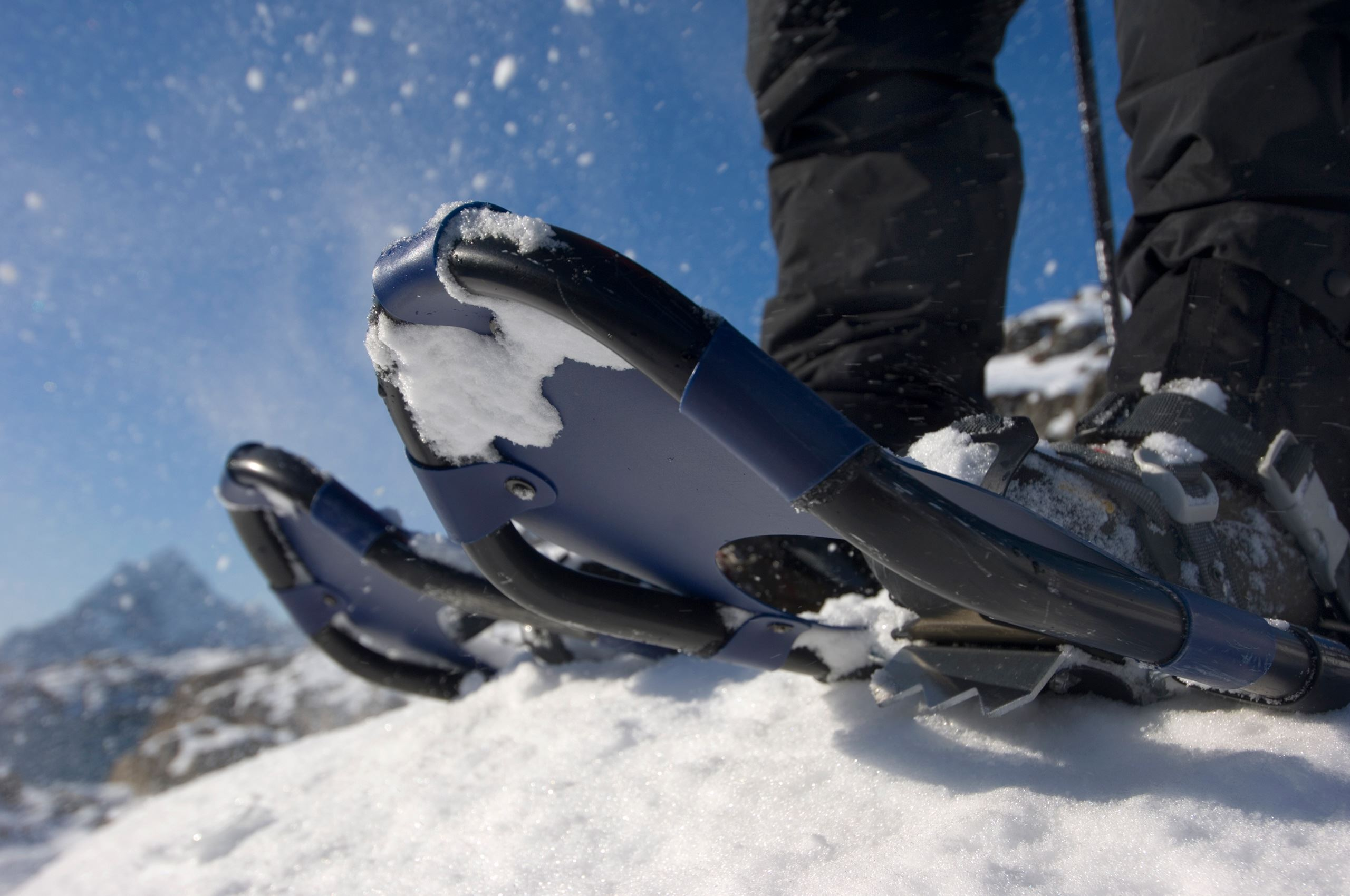 Snowshoe Explorer - guided showshoeing trips