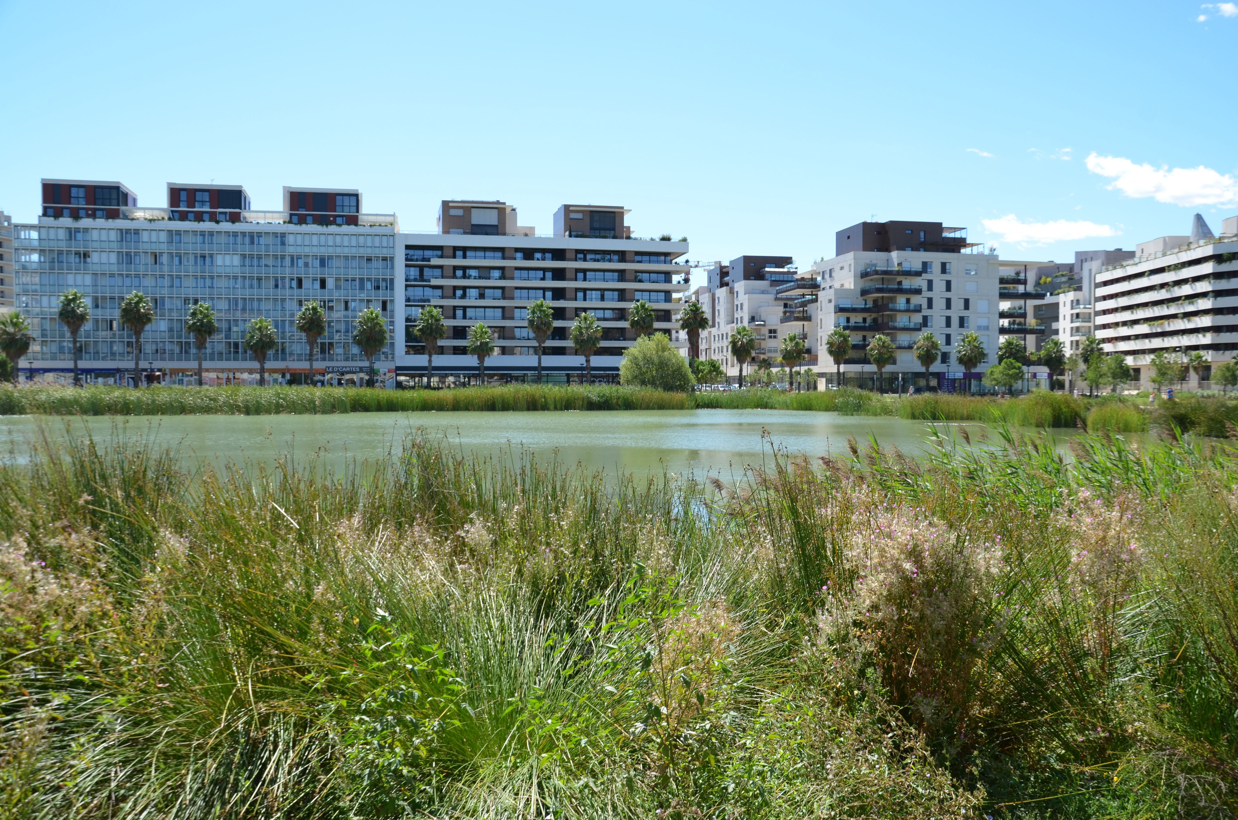 French guided tour - Port Marianne or the new architectures
